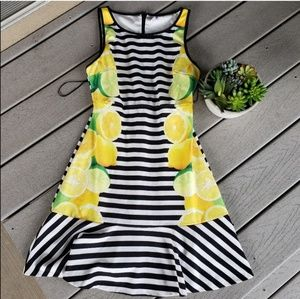 NWOT Elle Lemon Lime Summer Striped A-Line Dress